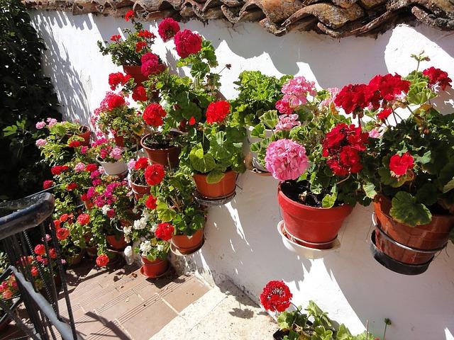 Blomkrukor i Spanien